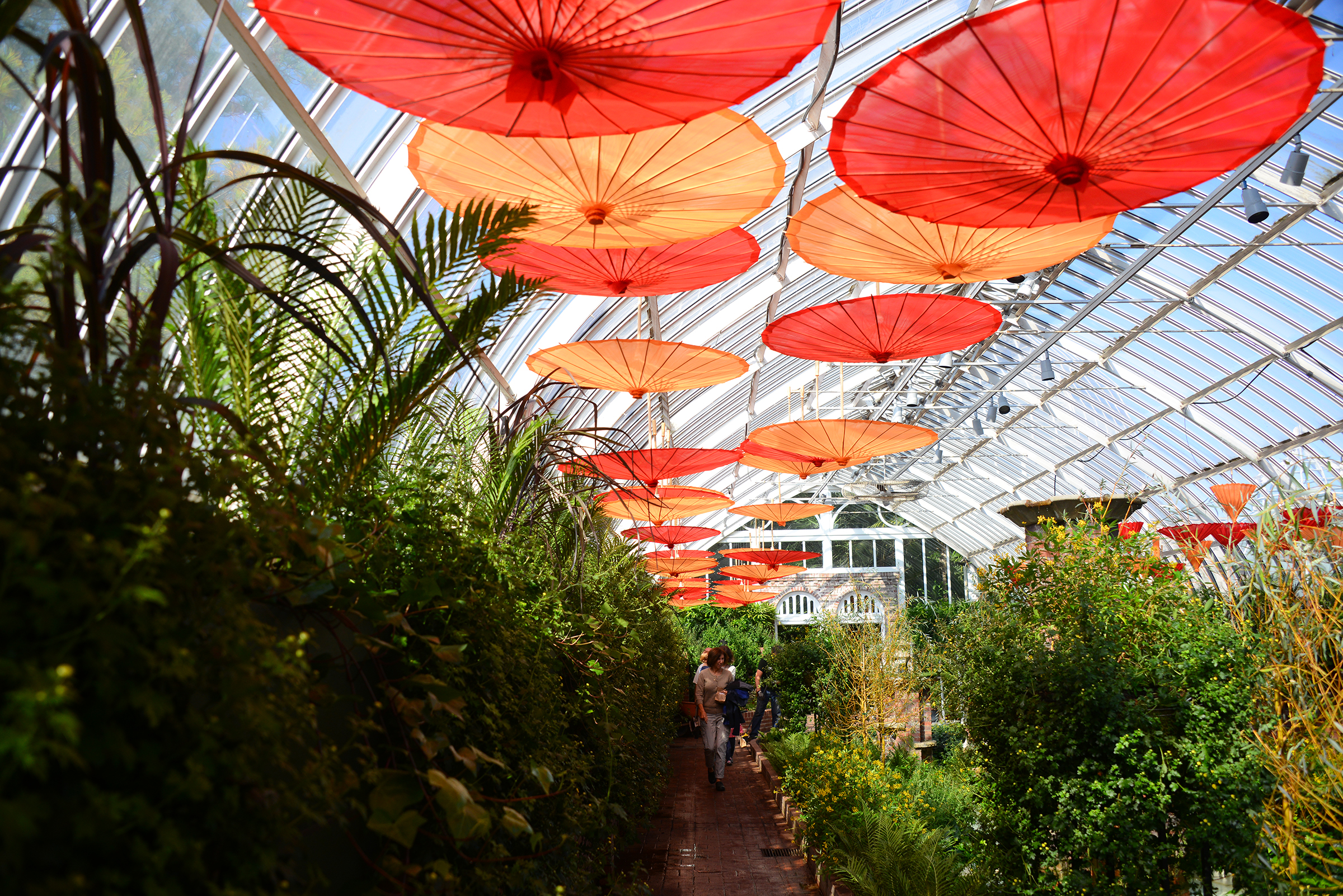 Umbrellas are in display in the Sunken Garden at Phipps Conservatory and Botanical Gardens in Oakland.